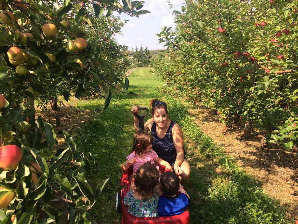 produce picking family picking apples in the orchard les roy de la pomme - verger et cidrerie saint-georges quebec canada ulocal local products local purchase local produce locavore tourist