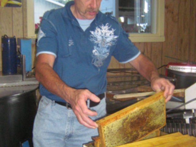 apiculteur richard paradis montrant le miel où les abeilles habitent les ruchers richard paradis et fils saint-hyacinthe québec canada ulocal produits locaux achat local produits du terroir locavore touriste