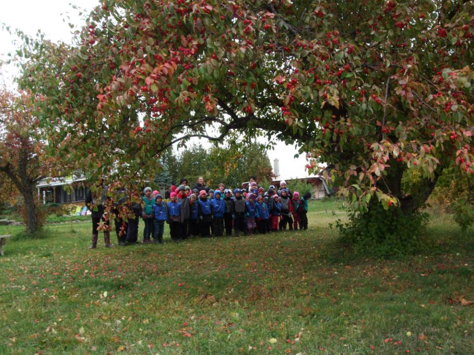 autocueillette groupe d'enfants qui cueillent des pommes dans le verger verger de l'île nepawa sainte-hélène-de-mancebourg québec canada ulocal produits locaux achat local produits du terroir locavore touriste
