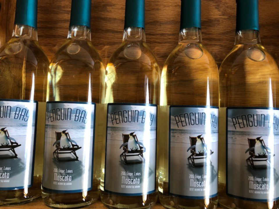 Vineyard wine bottles Penguin Bay Winery Hector New York United States Ulocal local product local purchase