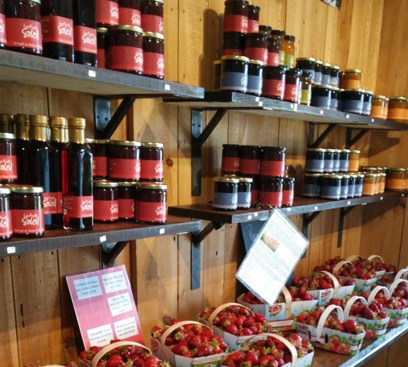Autocueillette fruits citrouille courge fraises bleuets Ferme Éthier Les Fruits Soleil Saint-Étienne-des-Grès Québec Ulocal produit local achat local