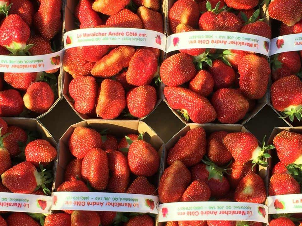 Fruits et légumes autocueillette boutique Le Maraîcher André Côté Saint-Paul-d'Abbotsford Ulocal produit local achat local
