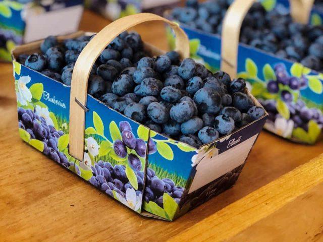 Blueberries U-pick restaurant boutique Les Bleuets of Vire-Crêpes Saint-Nicolas Quebec ulocal local product local purchase