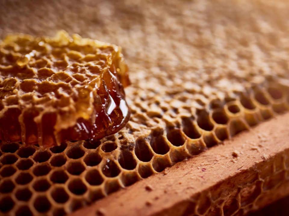 Beekeeper organic honeys farm shop Honeys of Anicet Ferme-Neuve Quebec Ulocal local product local purchase