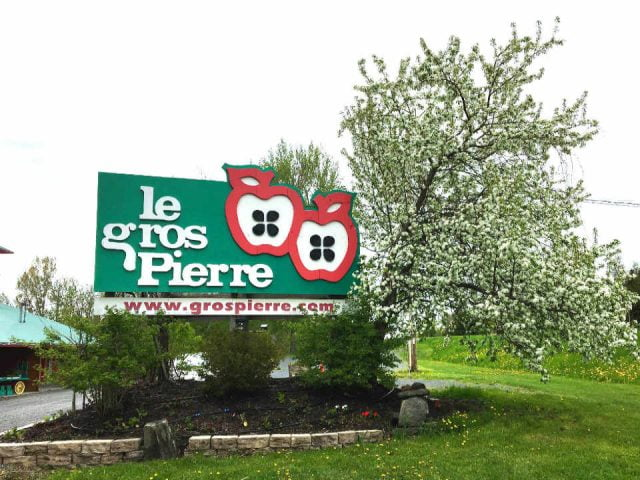 U-Pick apple food shop Orchard Le Gros Pierre Compton Quebec Ulocal local product local purchase