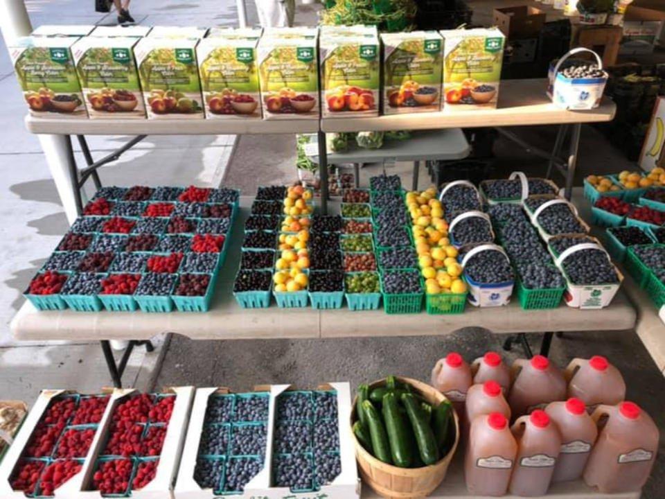 marché public kiosque extérieur de fruits et légumes bayfield farmers market bayfield ontario canada ulocal produits locaux achat local produits du terroir locavore touriste
