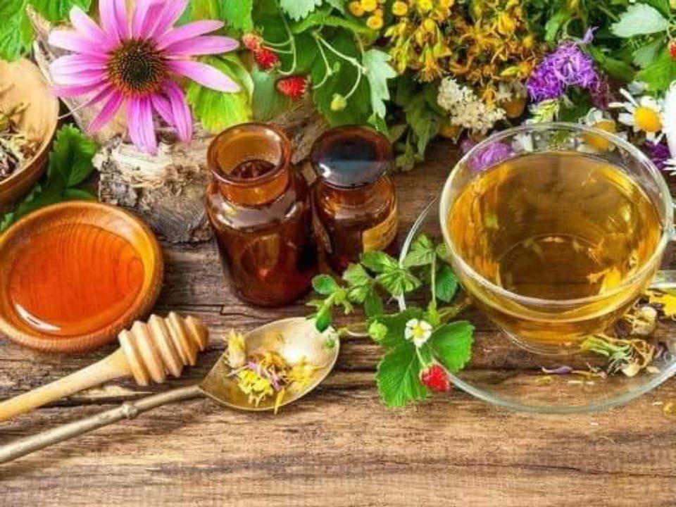 marché public table en bois avec produits du miel de différentes fleurs brights grove market sarnia ontario canada ulocal produits locaux achat local produits du terroir locavore touriste