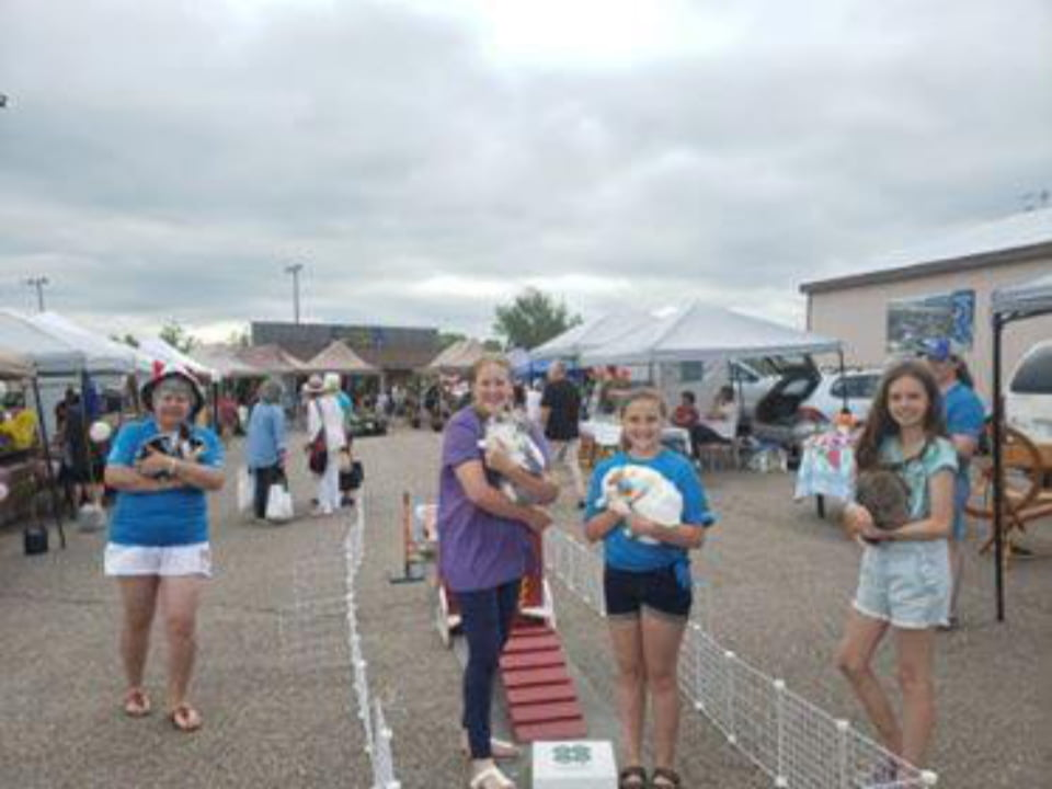 public markets young girls with rabbits in the arms with outdoor kiosks of the market in the background cobden farmers market cobden ontario canada ulocal local products local purchase local produce locavore tourist