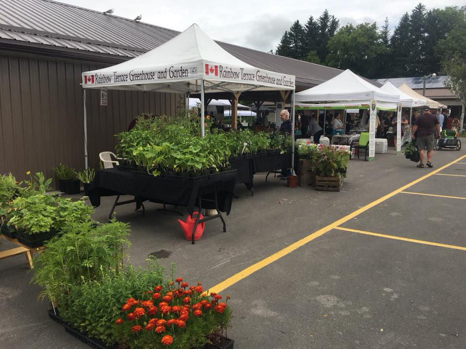 public markets outdoor kiosk of plants and of local produce with people on site during a cloudy day codrington farmers market codrington ontario canada ulocal local products local purchase local produce locavore tourist