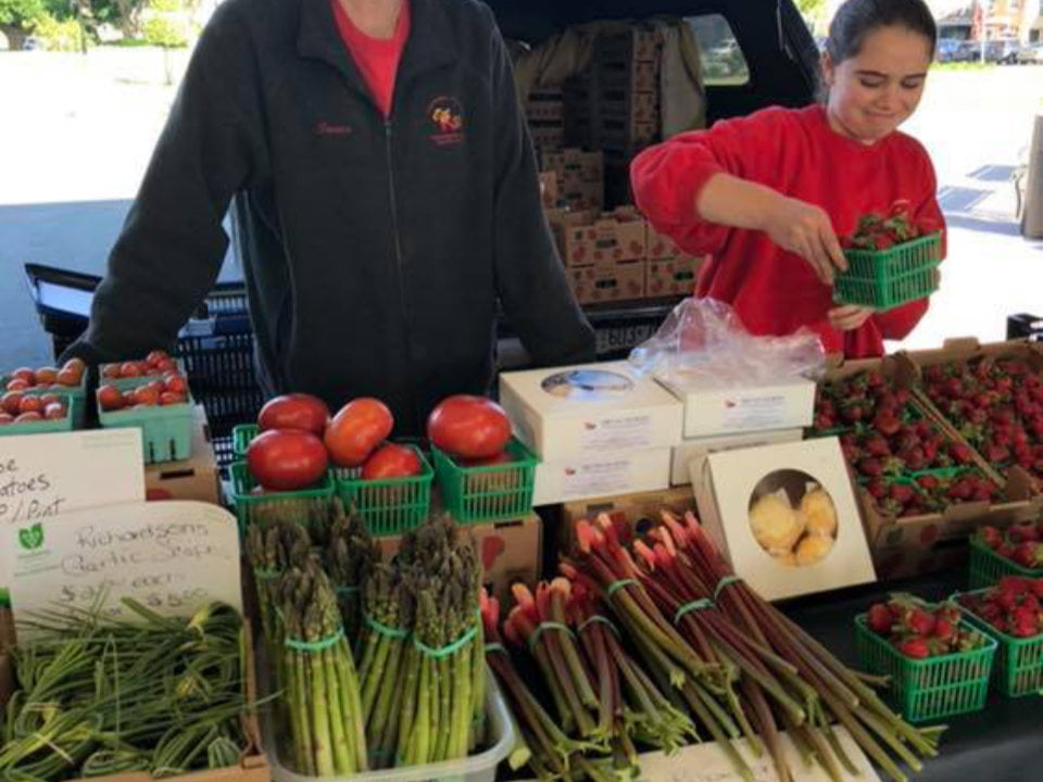 public markets outdoor kiosk of fruits and vegetables with employees dunnville farmers market dunnville ontario canada ulocal local products local purchase local produce locavore tourist