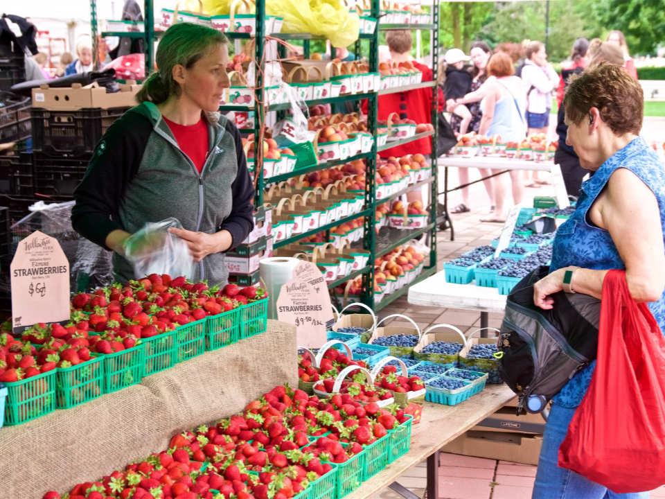 marché public kiosque extérieur de Willowtree Farm avec client et employée east york farmers market east york ontario canada ulocal produits locaux achat local produits du terroir locavore touriste