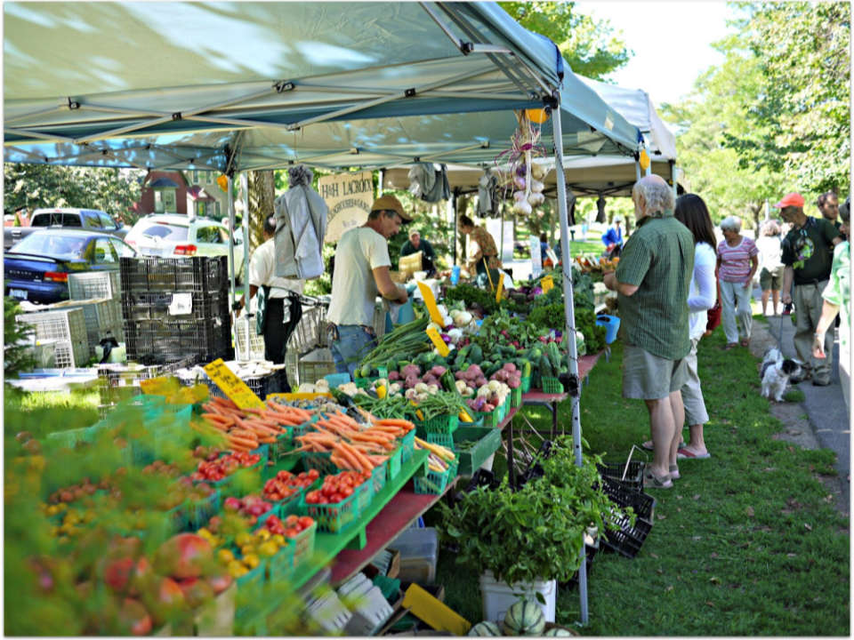 public markets outdoor kiosks of fruits and vegetables and local products with customers on the site elora farmers market elora ontario canada ulocal local products local purchase local produce locavore tourist