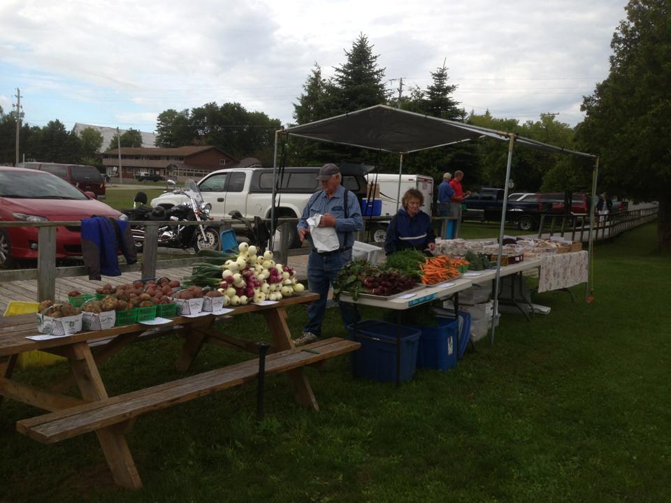 marché public kiosque extérieur de fruits et légumes avec gens aux tables gore bay farmers market gore bay ontario canada ulocal produits locaux achat local produits du terroir locavore touriste