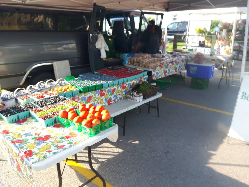 marché public kiosque extérieur de fruits grand bend village farmers market grand bend ontario canada ulocal produits locaux achat local produits du terroir locavore touriste