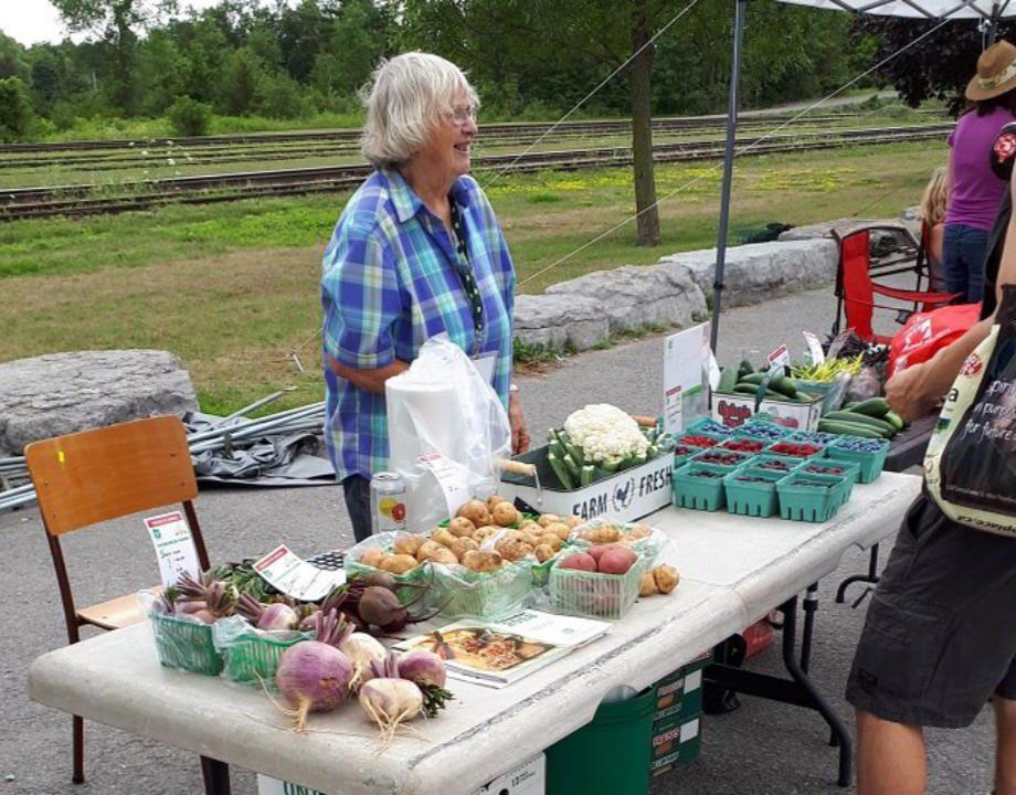 marché public kiosque extérieur de fruits et légumes frais havelock farmers and artisan market havelock ontario canada ulocal produits locaux achat local produits du terroir locavore touriste