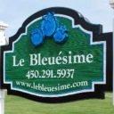 Autocueillette de bleuets Bleuésime Saint-Blaise-sur-Richelieu Ulocal produit local achat local