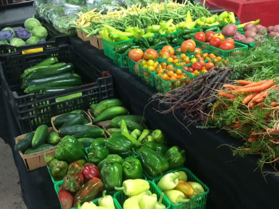 public markets beautiful farm fresh produce at Marshall farms booth mill market farmers market sault ste marie ontario canada ulocal local products local purchase local produce locavore tourist
