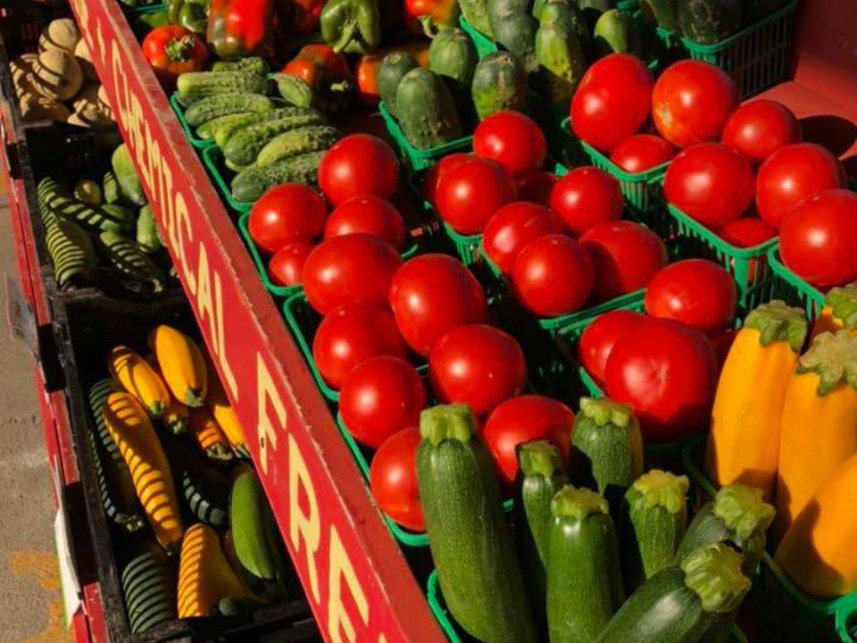 public markets beautiful colorful vegetables petrolia farmers market petrolia ontario canada ulocal local products local purchase local produce locavore tourist