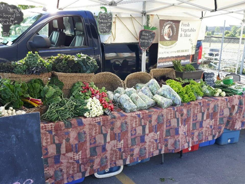 marché public kiosque extérieur de légumes port perry lakefront farmers market port perry ontario canada ulocal produits locaux achat local produits du terroir locavore touriste