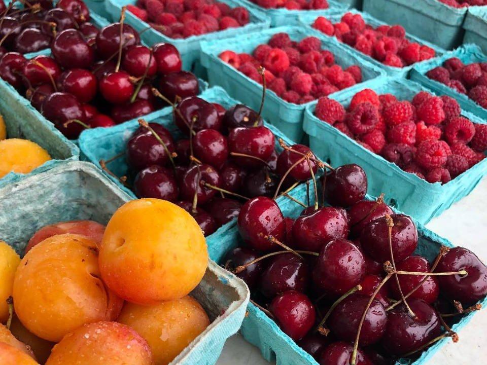 marché public kiosque de fruits et légumes frais southern georgian bay farmers markets midland winter market midland ontario canada ulocal produits locaux achat local produits du terroir locavore touriste