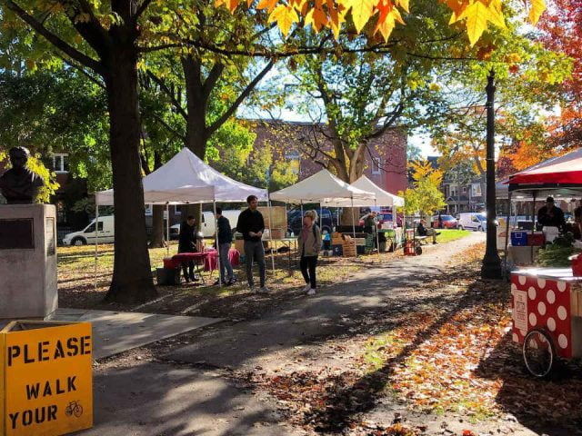 public markets beautiful autumn day with yellow and orange leaves with market in the park trinity bellwoods farmers market toronto ontario canada ulocal local products local purchase local produce locavore tourist