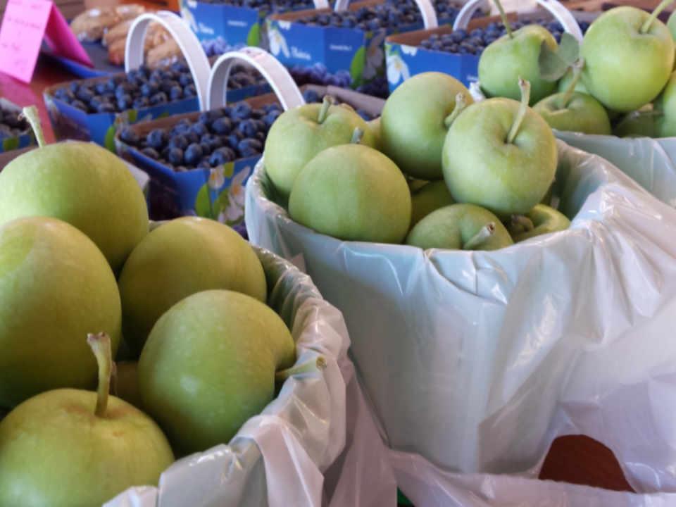 autocueillette pomme bleuets boutique d'aliments Vergers Cassidy Franklin Ulocal produit local achat local