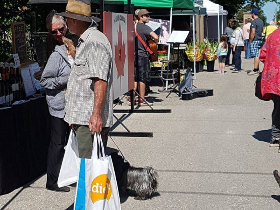 public markets sunny day with customers at kiosks and live music wellington north farmers market mount forest ontario canada ulocal local products local purchase local produce locavore tourist