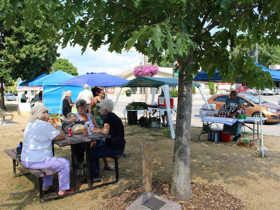 marché public journée ensoleillée au marché avec gens assis à une table de pique-nique wingham farmers market wingham ontario canada ulocal produits locaux achat local produits du terroir locavore touriste