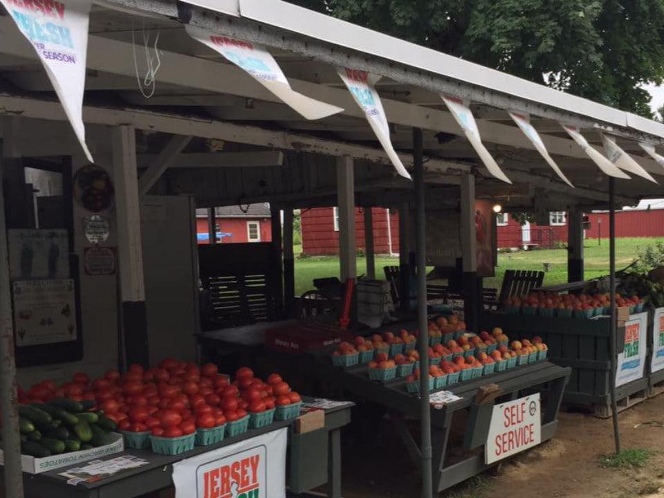 marché de fruits et/ou légumes tables de fruits et légumes sous le kiosque 206 farm market hillsborough township new jersey united states ulocal produits locaux achat local produits du terroir locavore touriste