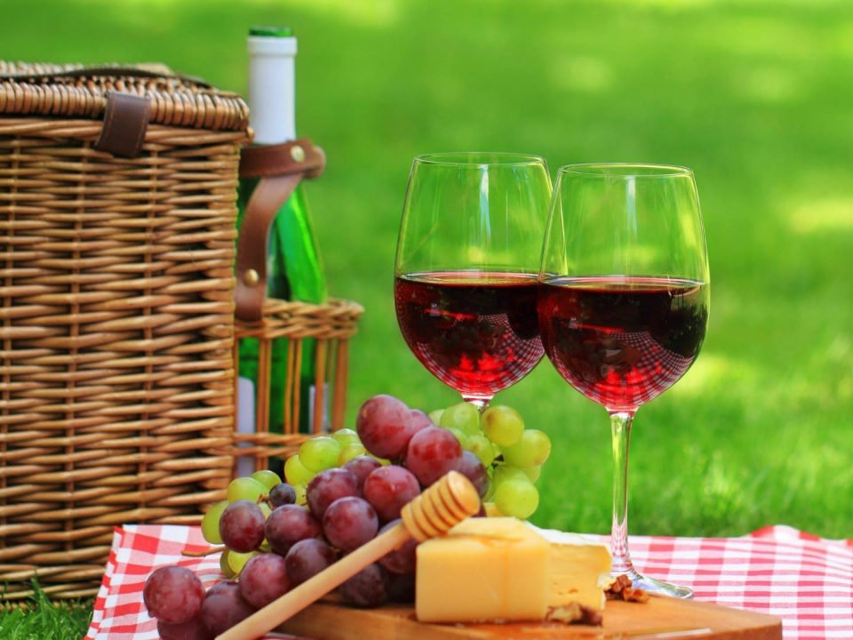 vineyard vineyards bottle and 2 glasses of red wine with basket grapes and cheese on a checkered tablecloth 4 jg's orchards and vineyards colts neck new jersey united states ulocal local products local purchase local produce locavore tourist