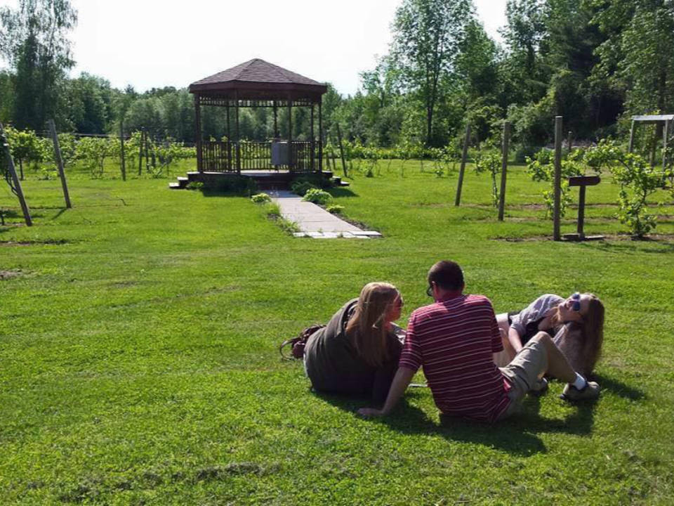 vineyards beautiful grounds surrounded by vineyards with a pergola for special events with 3 people lying on the grass amazing grace vineyard and winery chazy new york united states ulocal local products local purchase local produce locavore tourist