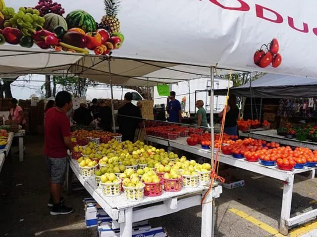public markets busy day at the market with customers at the fruit and vegetable kiosk berlin farmers market berlin new jersey united states ulocal local products local purchase local produce locavore tourist