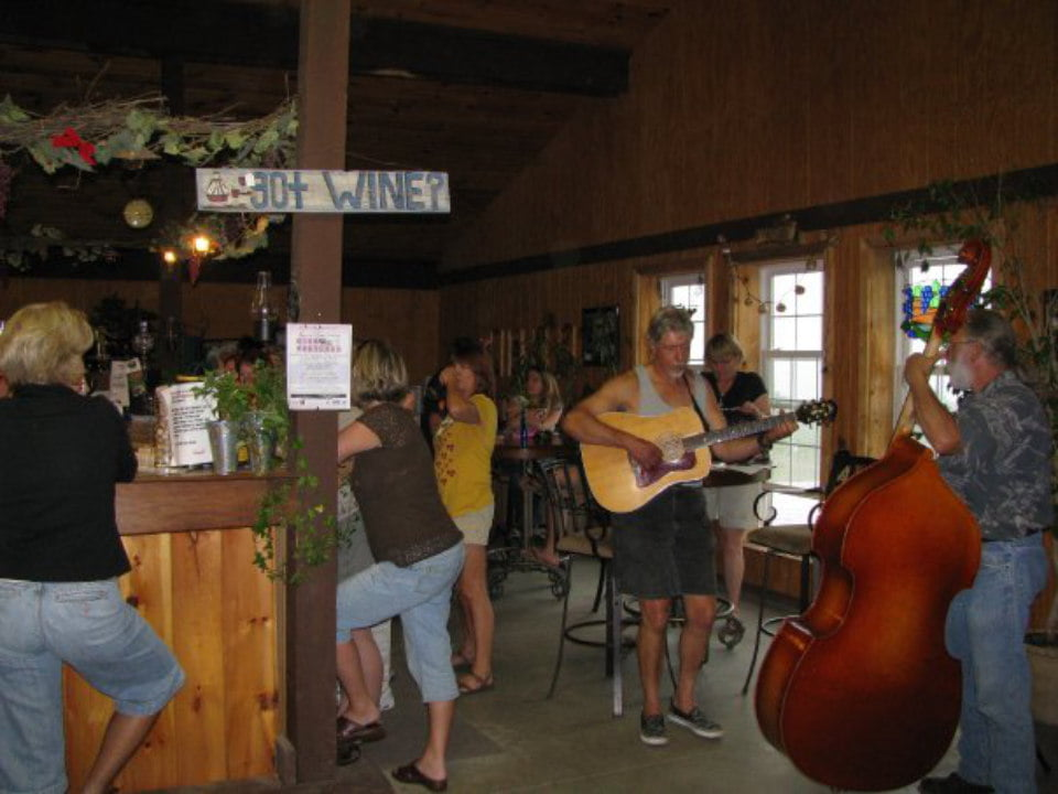 vineyards tasting bar with clients and band playing live music on guitar and cello catherine valley winery burdett new york united states ulocal local products local purchase local produce locavore tourist