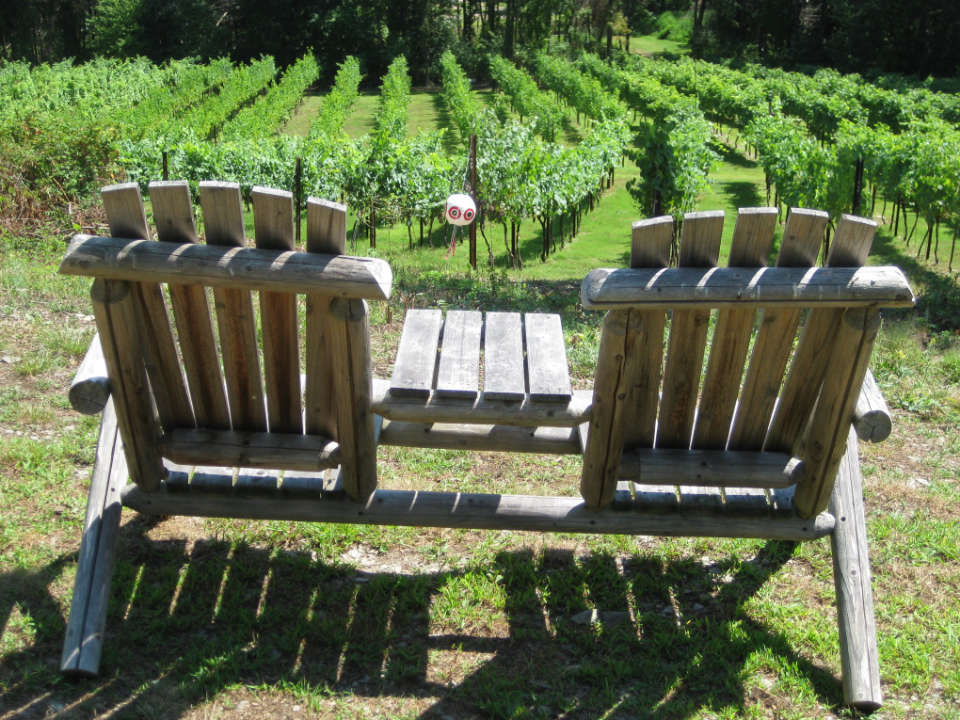 vineyards 2 wooden patio chairs in the vineyard clearview vineyard warwick new york united states ulocal local products local purchase local produce locavore tourist