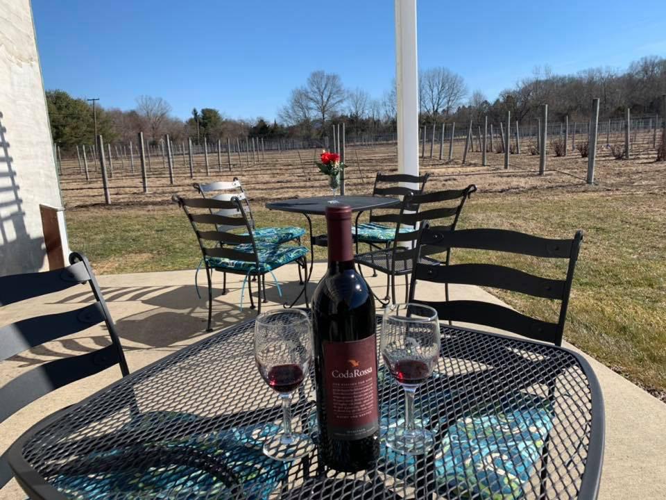 vignoble tables avec 1 bouteille et 2 verres de vin rouge et chaises sur le magnifique patio terrasse avec vue sur le vignoble coda rossa winery franklinville new jersey united states ulocal produits locaux achat local produits du terroir locavore touriste
