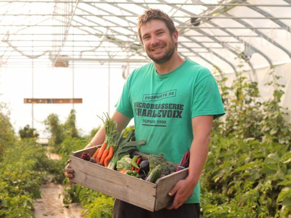 produce market owner jean-thomas fortin in a greenhouse with a basket of organic vegetables ferme maraîchère la bordée des corneilles baie-saint-paul quebec canada ulocal local products local purchase local produce locavore tourist
