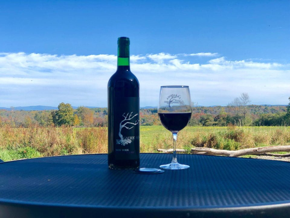 vignoble bouteille et verre de vin rouge vues d'automne de notre patio galway rock vineyard and winery ballston lake new york états unis ulocal produits locaux achat local produits du terroir locavore touriste