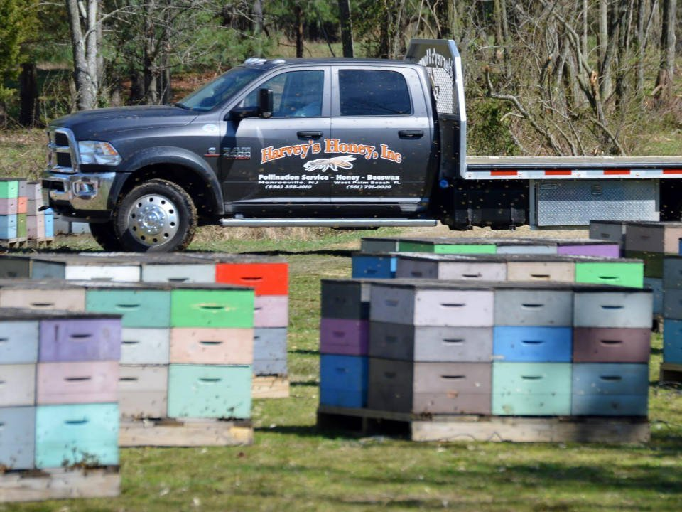 beekeeping truck near boxes of hives on the ground harveys honey monroeville new jersey united states ulocal local products local purchase local produce locavore tourist