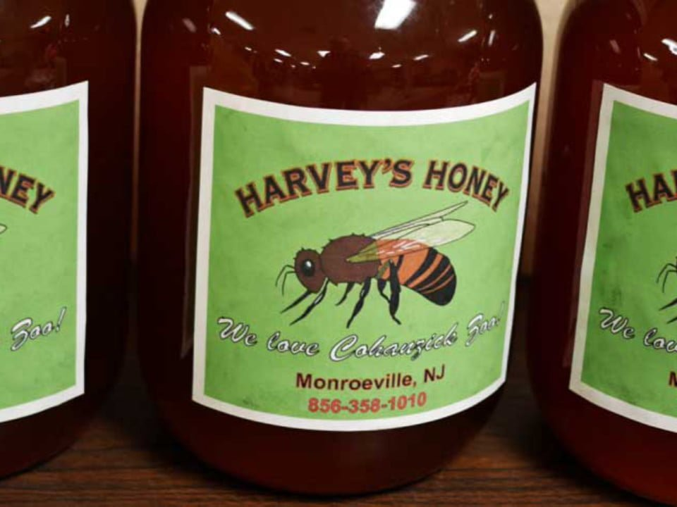 beekeeping jar of honey with bee on the label harveys honey monroeville new jersey united states ulocal local products local purchase local produce locavore tourist