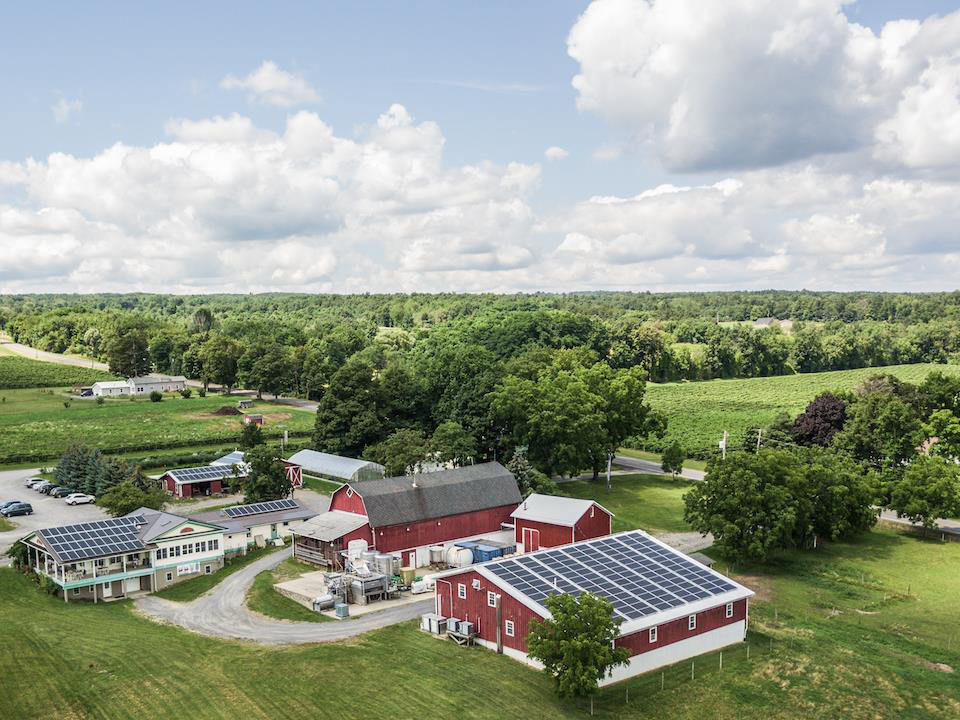 vineyard aerial view of vineyard and winery with rooftop solar panels hunt country vineyards branchport new york united states ulocal local products local purchase local produce locavore tourist