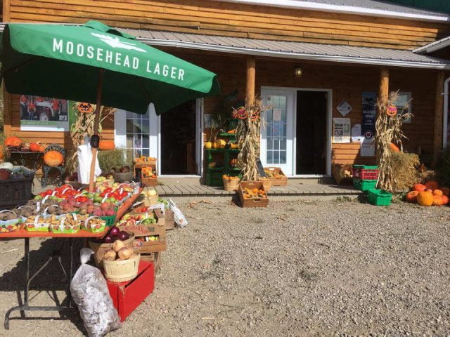 produce markets wooden building shop facade with outdoor fruit and vegetable kiosk les jardins du centre les éboulements quebec canada ulocal local products local purchase local produce locavore tourist