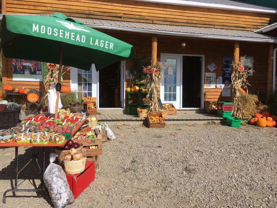 marché de fruits et/ou légumes façade de la boutique bâtisse en bois avec kiosque extérieur de fruits et légumes les jardins du centre les éboulements quebec canada ulocal produits locaux achat local produits du terroir locavore touriste