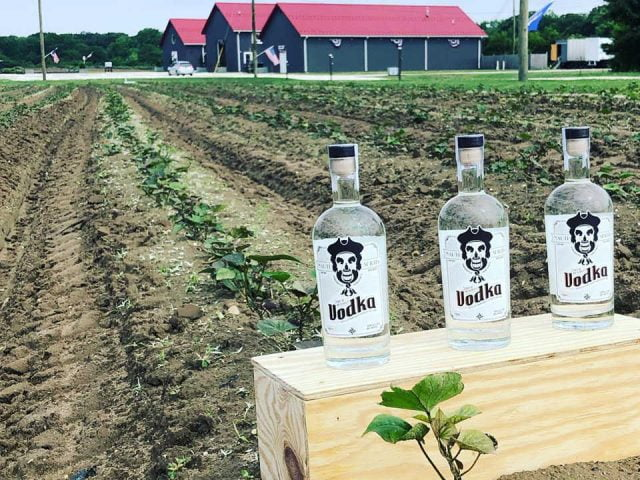 liquor sweet potatoes will become a nice bottle of spirits of vodka from the harvest nauti spirits distillery cape may new jersey united states ulocal local products local purchase local produce locavore tourist