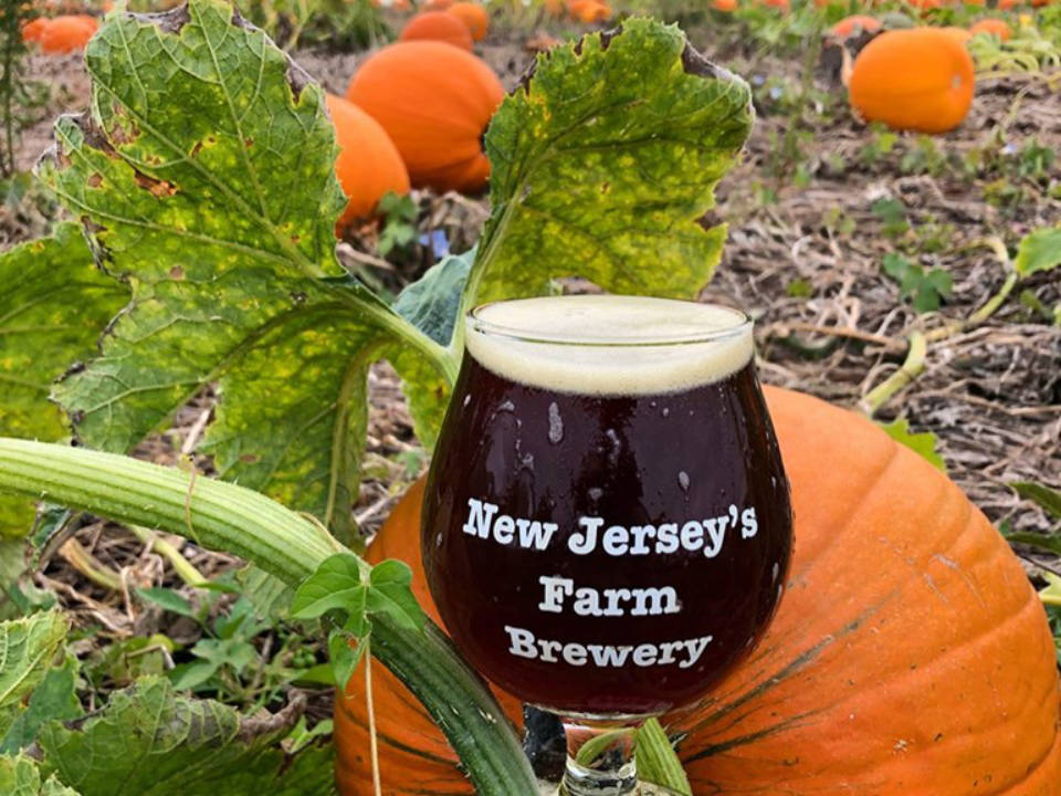 microbreweries glass of craft beer in a pumpkin patch screamin hill brewery cream ridge new jersey united states ulocal local products local purchase local produce locavore tourist