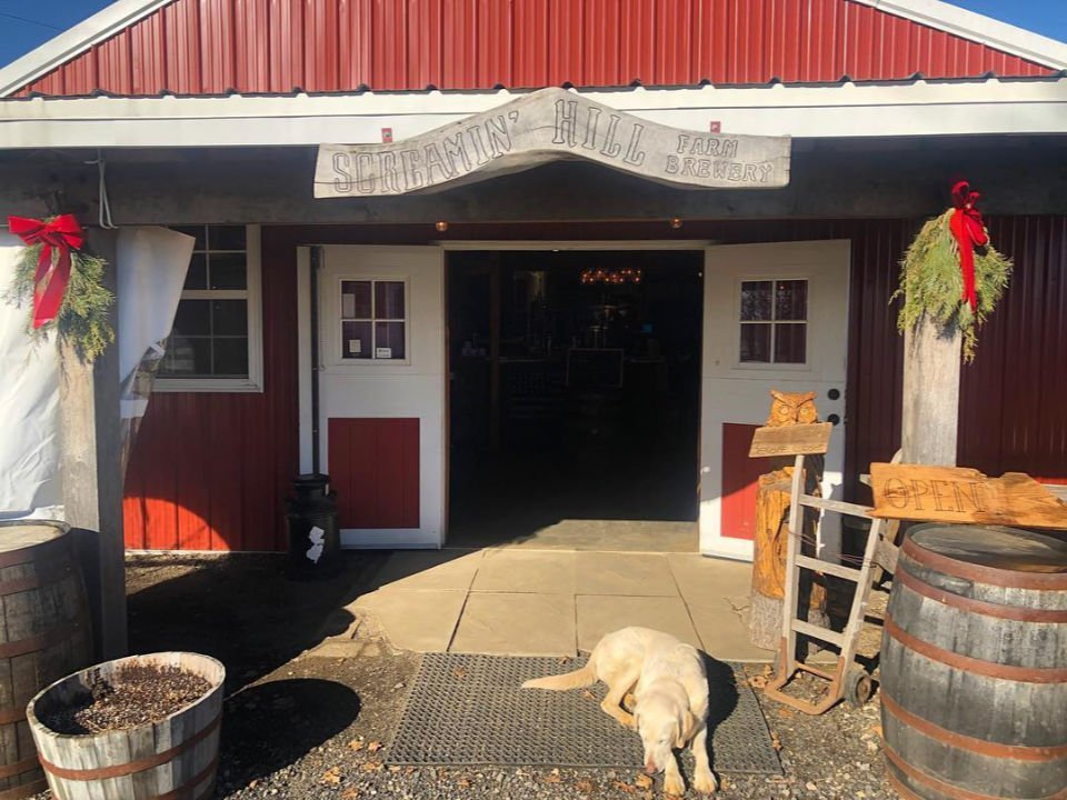 microbrasseries ferme rouge avec chien à l'entrée des porte de la microbrasserie screamin hill brewery cream ridge new jersey états unis ulocal produits locaux achat local produits du terroir locavore touriste