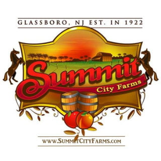vineyard logo summit city winery glassboro new jersey united states ulocal local products local purchase local produce locavore tourist