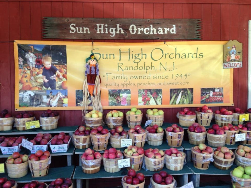produce picking logo sun high orchards randolph new jersey united states ulocal local products local purchase local produce locavore tourist
