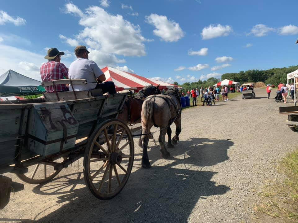 produce picking many activities during harvest time carriage with horses terhune orchards pick your own princeton new jersey united states ulocal local products local purchase local produce locavore tourist