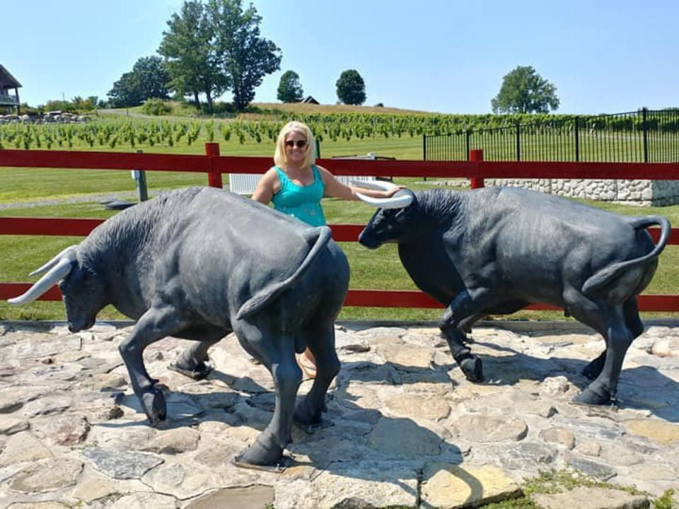 vineyards customer with the 2 black bulls running emblem at the entrance of the vineyard and view of the vineyards in the background toro run winery ovid new york united states ulocal local products local purchase local produce locavore tourist