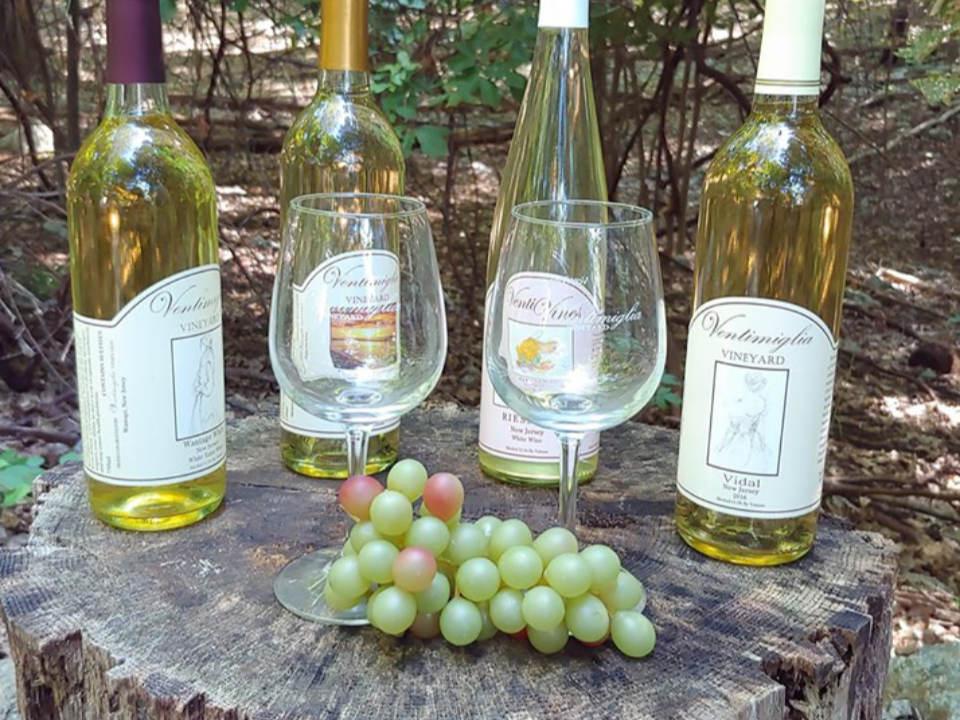 vignoble 4 bouteilles de vins sur un tronc d'arbre dans les vignes sans feuilles avec raisins verts ventimiglia vineyard wantage new jersey états unis ulocal produits locaux achat local produits du terroir locavore touriste